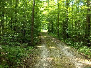 3221 Green River Dr, Severn Township Ontario