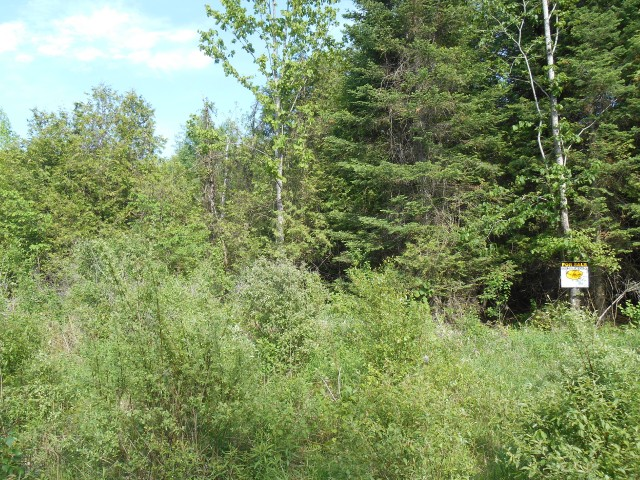 Pt Lot 15 Rock Road, Douro-dummer Township Ontario