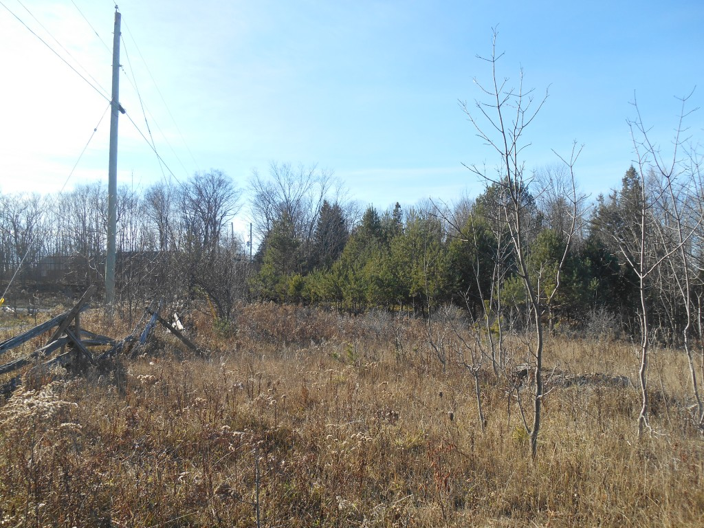 Part 1 Northey`s Bay Rd, Woodview Ontario
