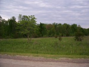 Conc. 1 Part Lot 21, Trent Hills Ontario