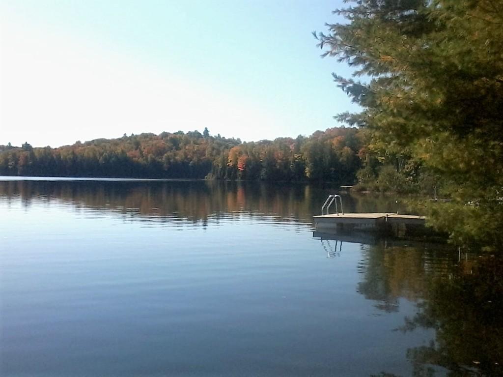 289 Siddon Lake Pl, Bancroft Ontario, Canada