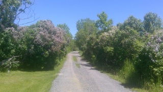 3135 Burbrook Road, Kingston Ontario
