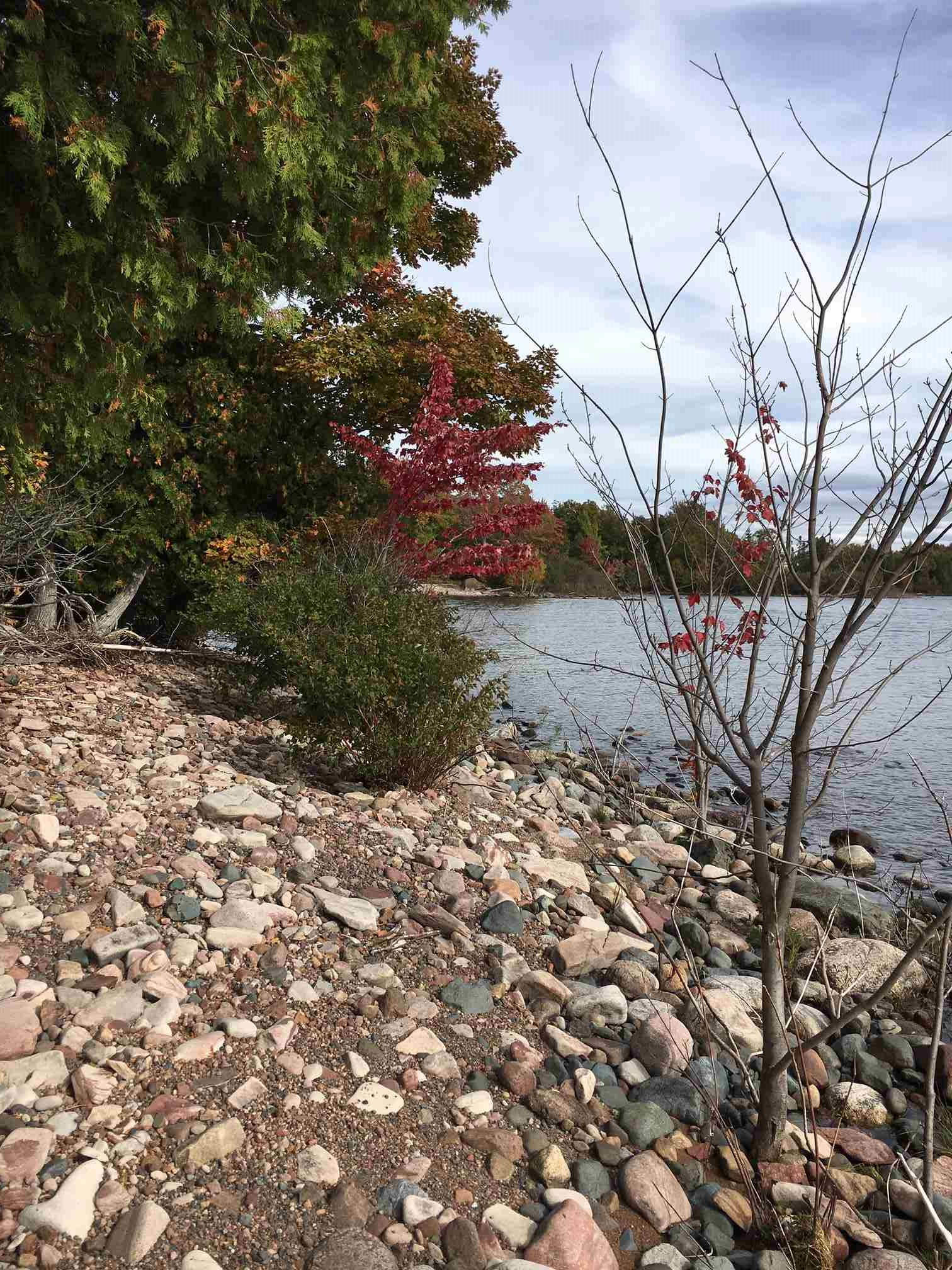 Lot 79 & 80 Marlette Drive, Havilland Ontario, Canada