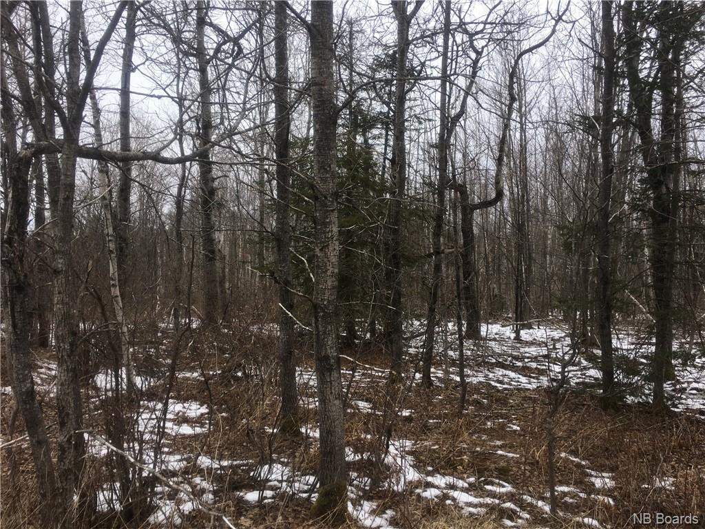 - East Scotch Settlement Road, Belleisle Creek New Brunswick, Canada
