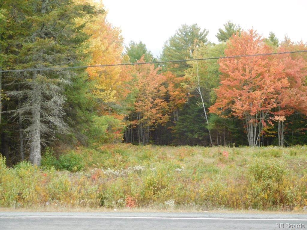 Lot B Route 10, Coles Island New Brunswick, Canada