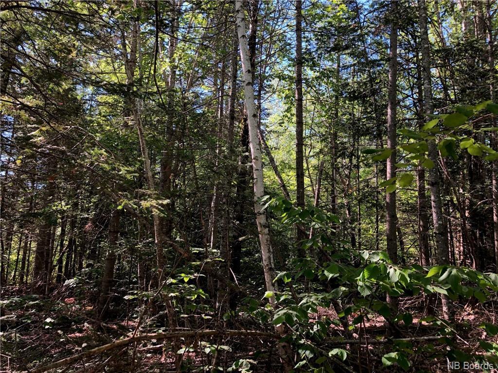 Lot 07-05 Creek Road, Berwick New Brunswick, Canada