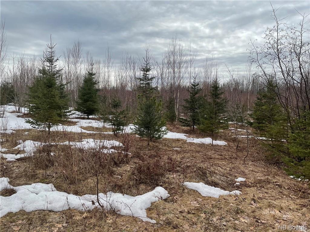 Parcel B Mclean Road, Cumberland Bay New Brunswick, Canada