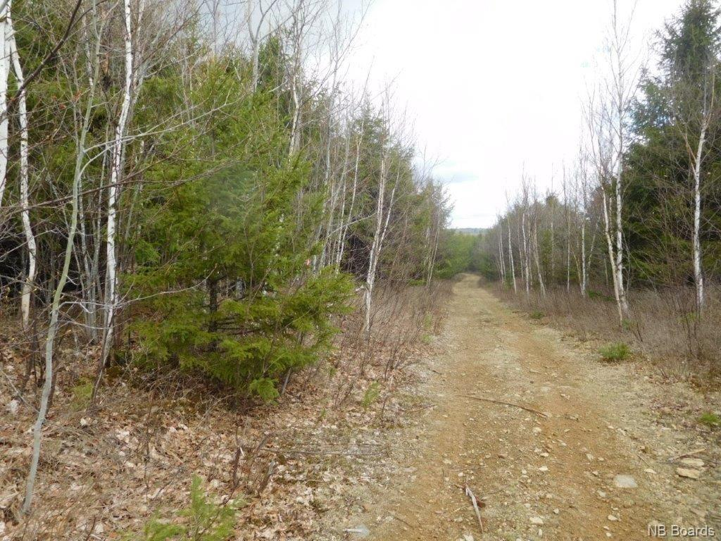 - Green Road, Elgin, New Brunswick, Canada