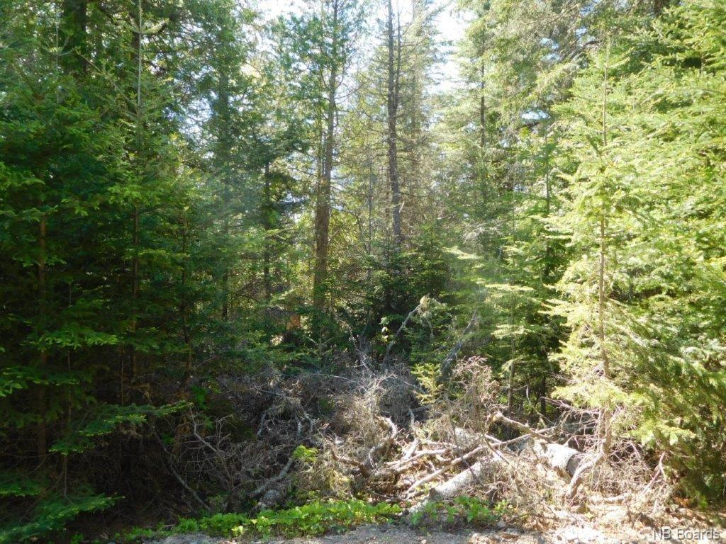 Lot 91-32 Old Public Road, Kennebecasis Island New Brunswick, Canada