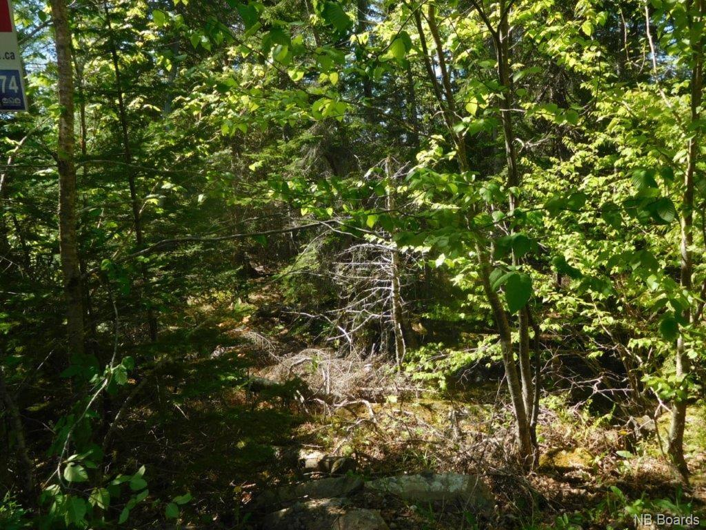 Lot 91-35 Old Public Road, Kennebecasis Island New Brunswick, Canada