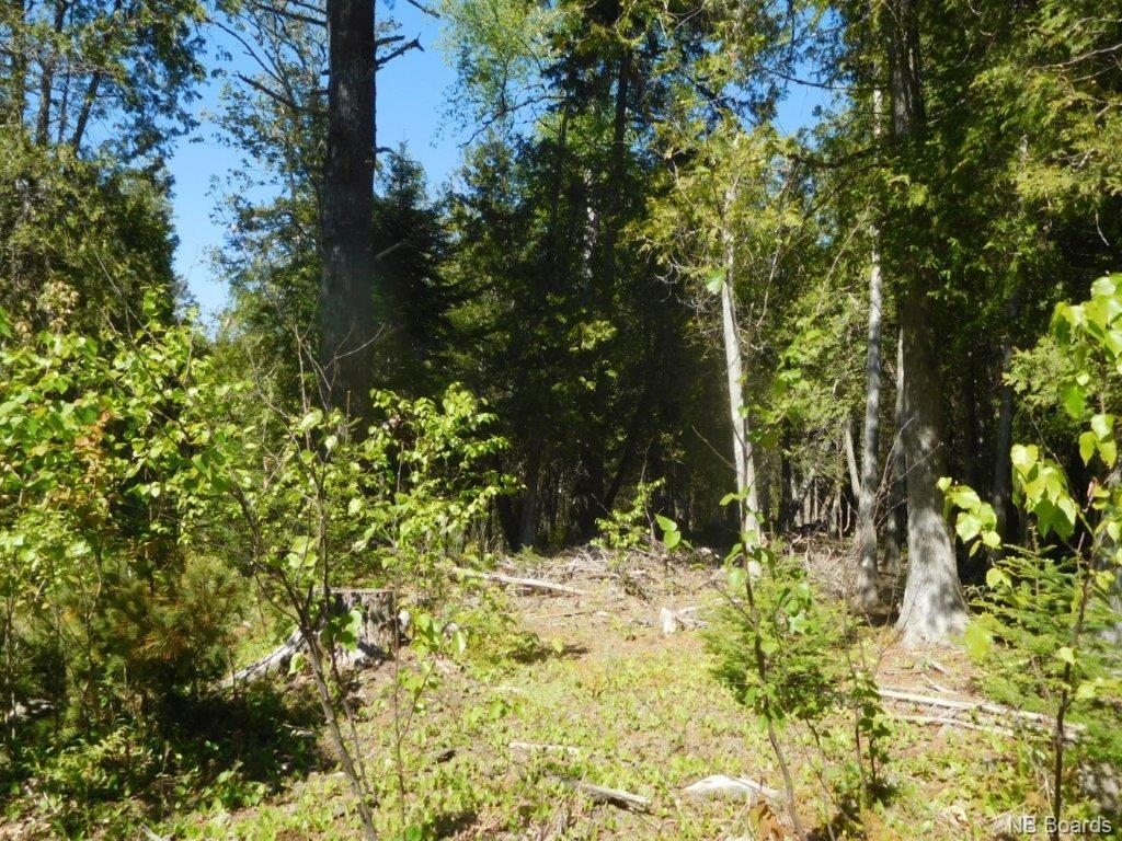 Lot 91-45 Old Public Road, Kennebecasis Island New Brunswick, Canada