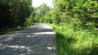 1627 Swinson Rd, Kinmount Ontario