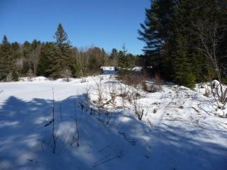 4730 County Road 121, Minden Hills Ontario