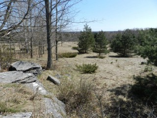 Pt Lot 15 Woodcock Line, City Of Kawartha Lakes Ontario