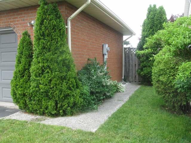 95 Lynndale Road, Simcoe Ontario