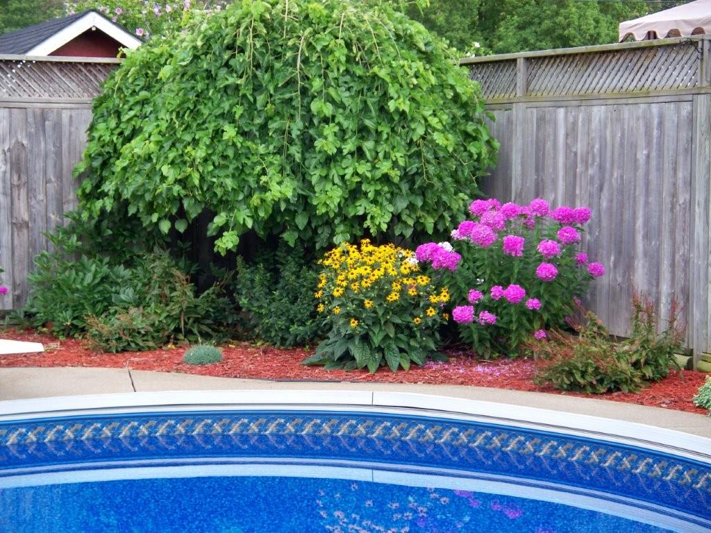 801 Oak Ave, Sarnia Ontario
