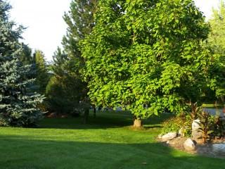 Smith-Ennismore-Lakefield Township Ontario