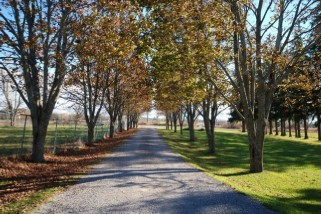Norwood Ontario