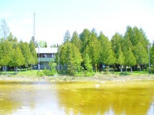 745 Dorcas Bay Rd,st. Edmunds Twp/ Lake Huron