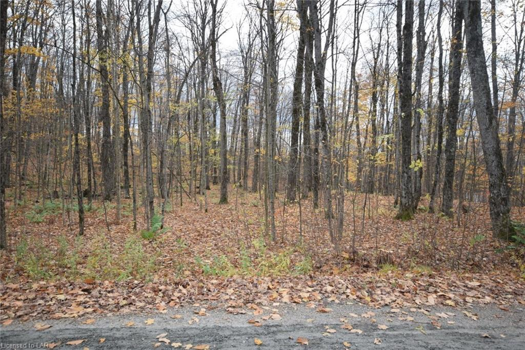 Lot 51 Wenona Lake Road, Haliburton Ontario, Canada