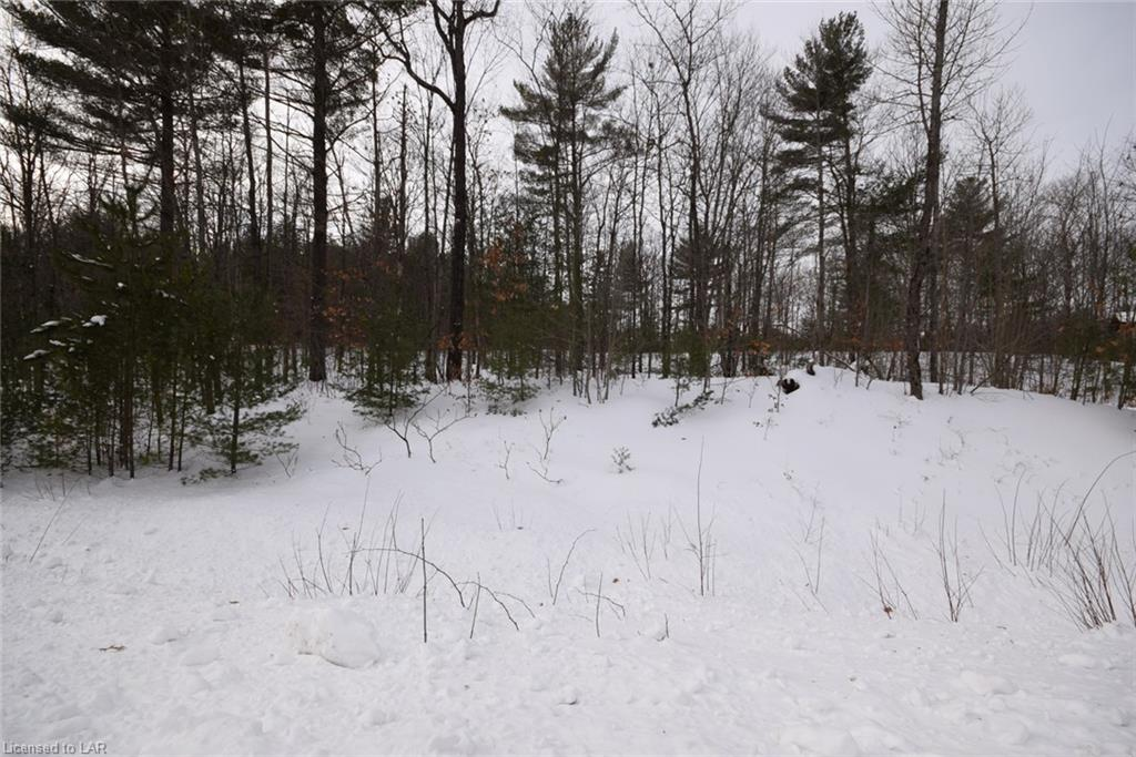 Lot 23 Deep Bay Road, Minden Ontario, Canada