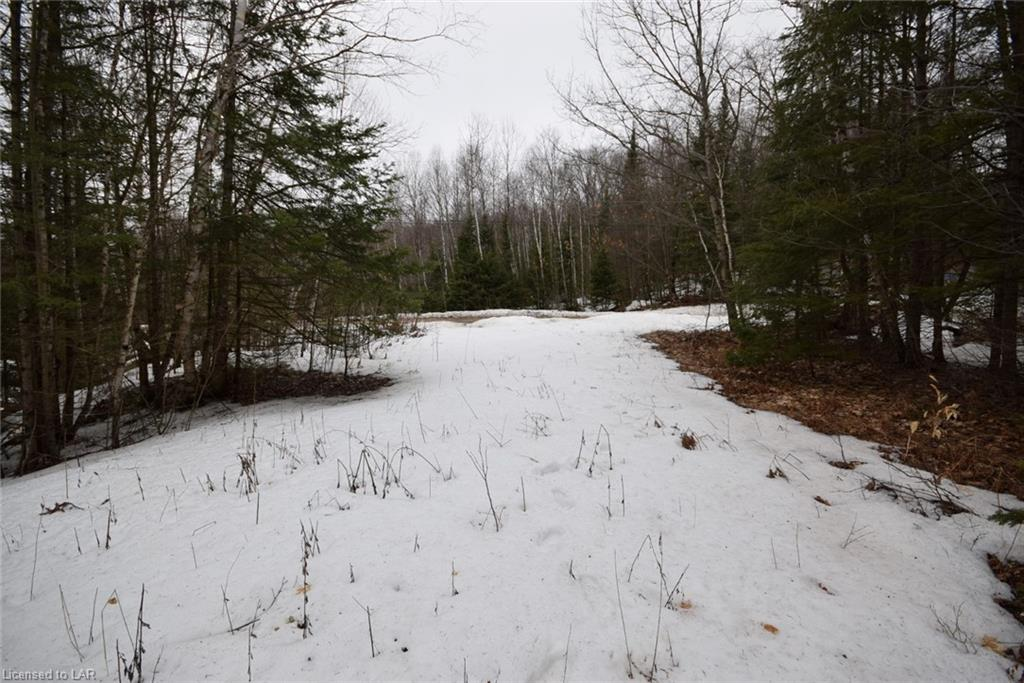 Lot 26 Tattersal Road, Haliburton Ontario, Canada