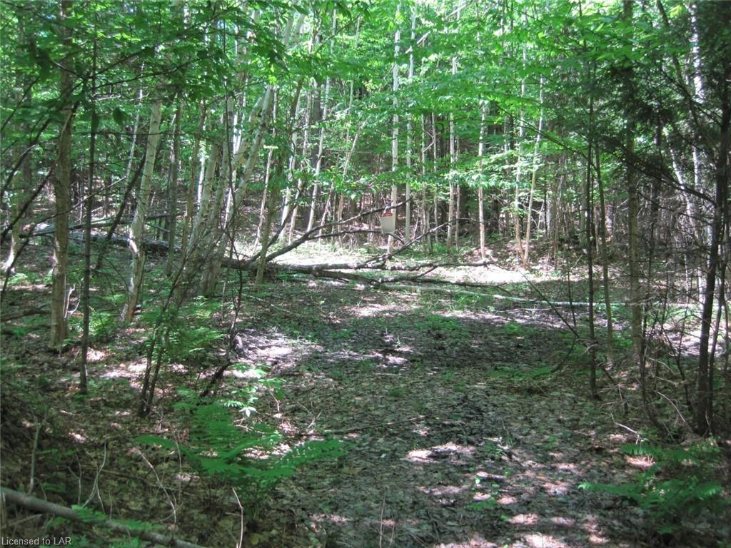 Lot 25 West Court Place, Haliburton Ontario, Canada