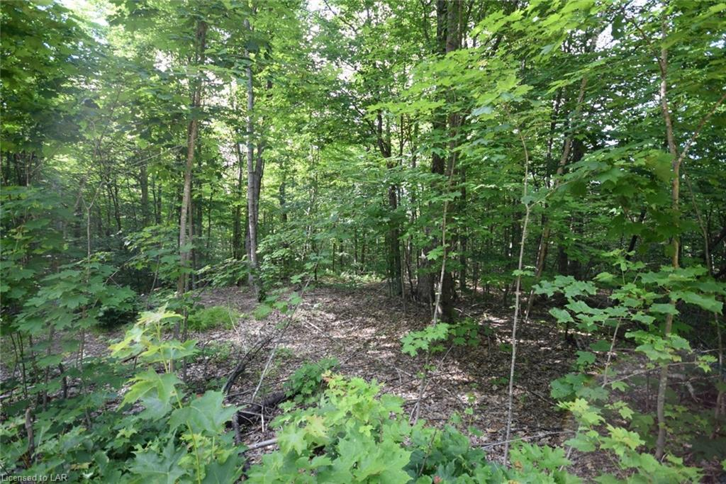 Lot 42 South Drive, Eagle Lake Village Ontario, Canada