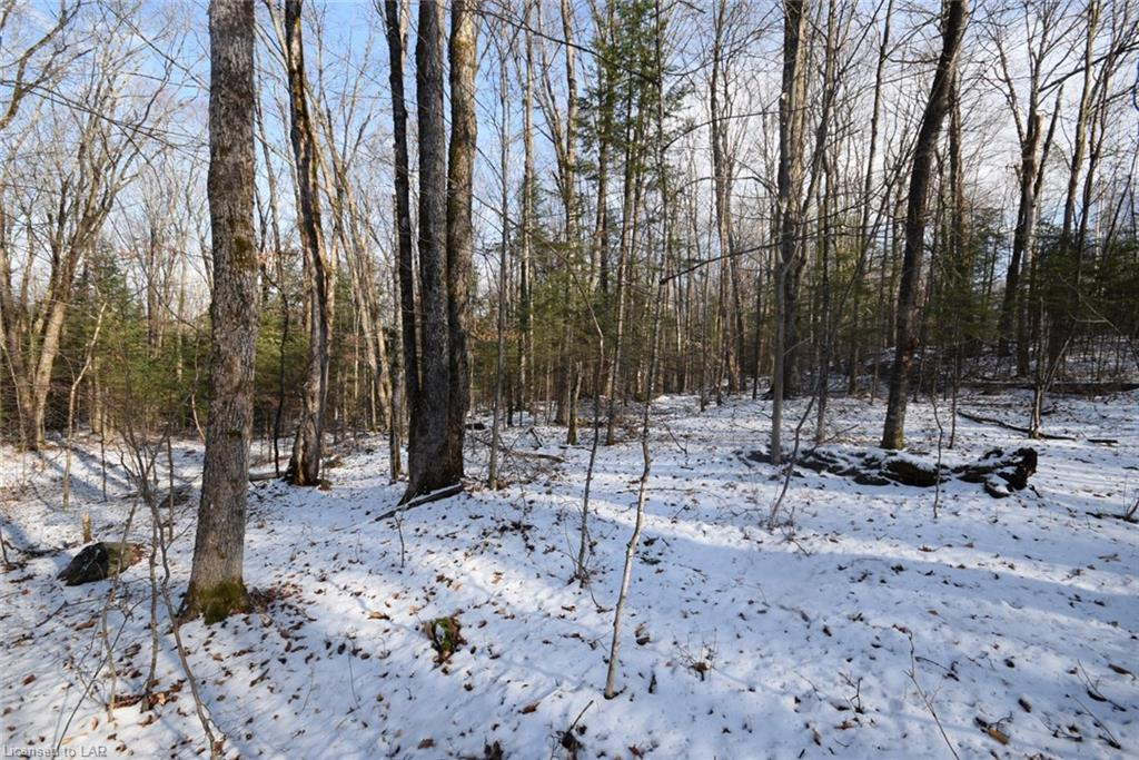 Lot 40 South Drive, Eagle Lake Village Ontario, Canada