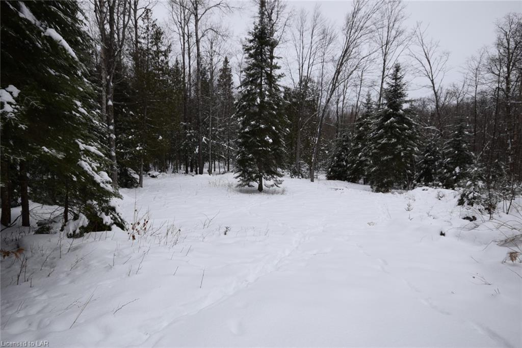 Lot 18 Angel Road, Eagle Lake Village Ontario, Canada