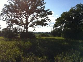 Ptlt4 Massassauga Rd, Ameliasburg Ward Ontario