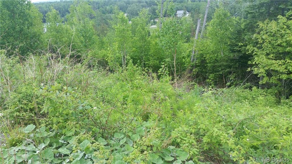 Lot 8 Clearview Court, Nackawic New Brunswick, Canada