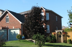 535 Londry Crt, Newmarket Ontario, Canada