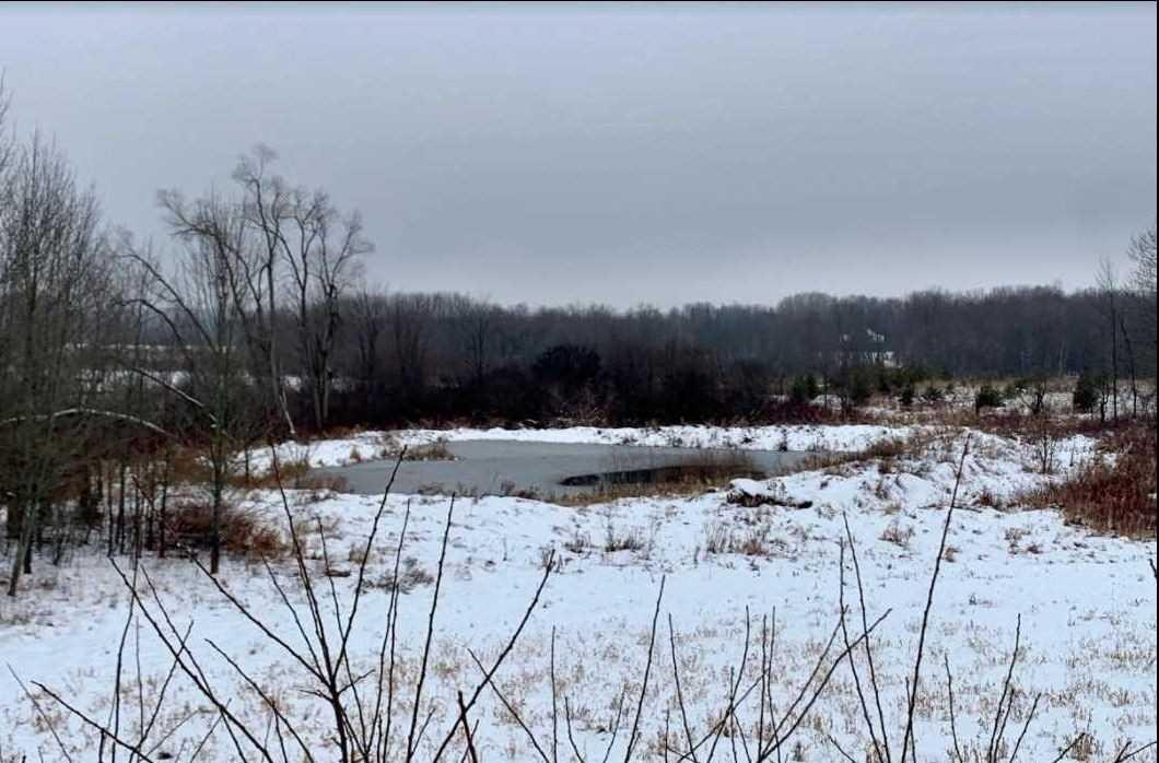 196300 Grey Road 7 Rd, Grey Highlands Ontario, Canada
