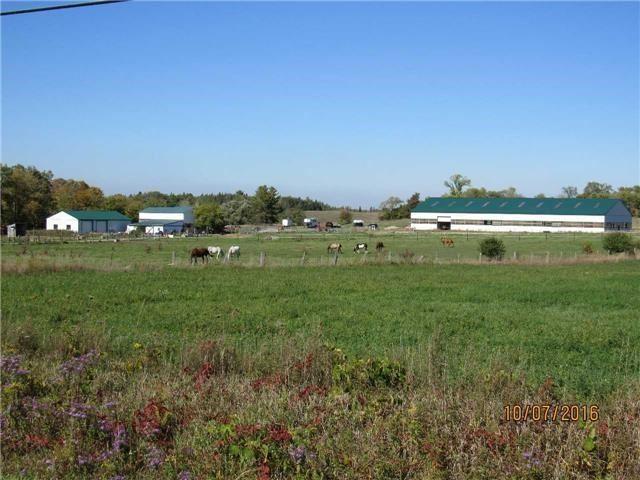 4244 doane rd east, Bradford-West Gwillimbury Township Ontario, Canada