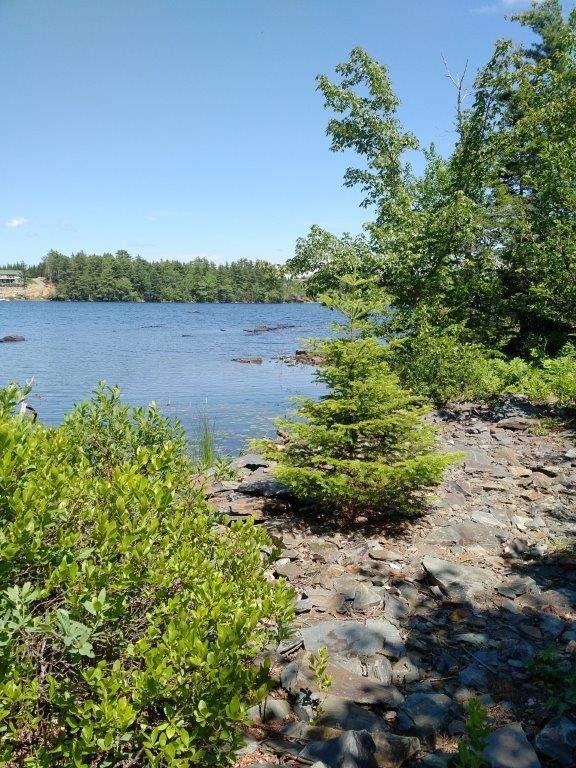 Lot 5-4 Natural Forest Lake Road, Upper Cornwall Nova Scotia, Canada