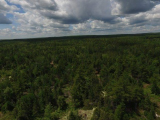 Lot Highway 12, New Ross Nova Scotia