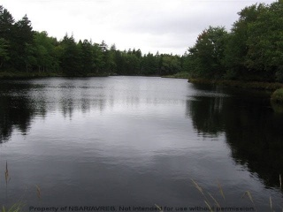 Big River Road, Forties Nova Scotia