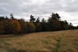 Lot B5 Wentzell Road, Baker Settlement Nova Scotia