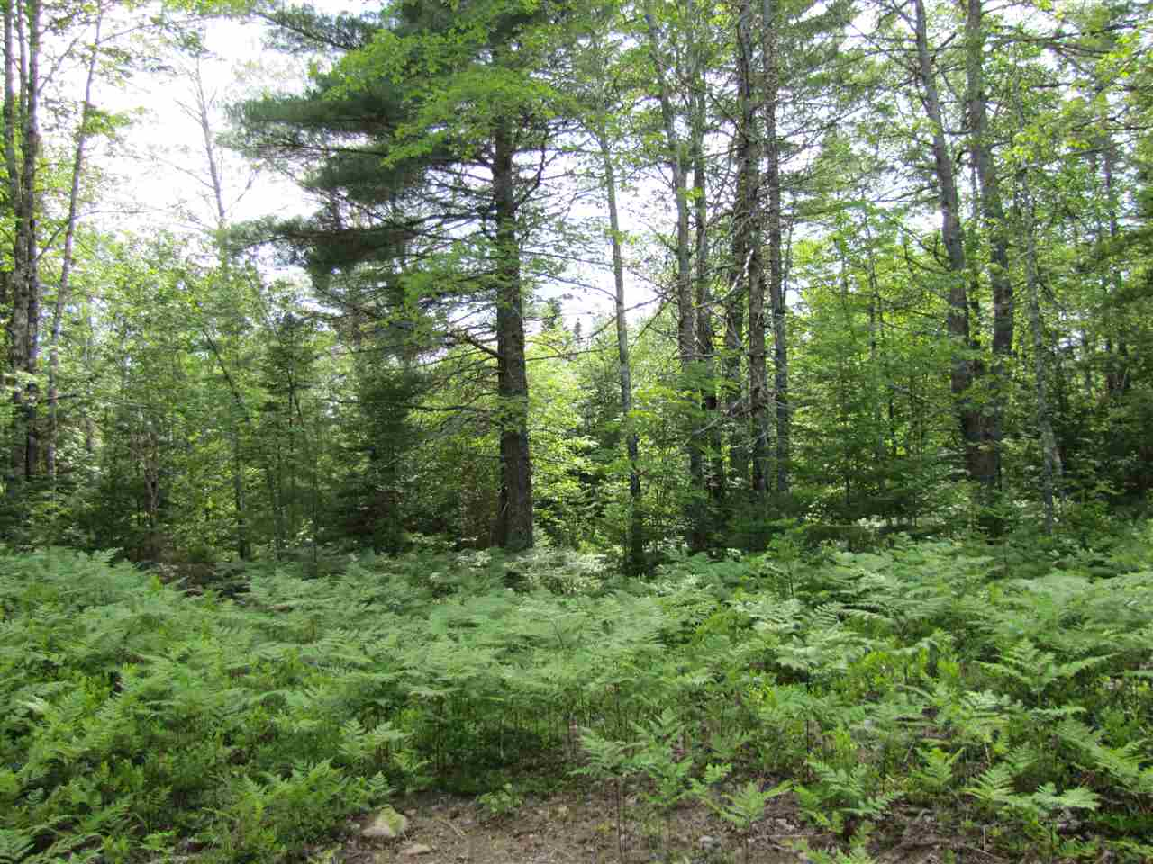 Lot 94ab Crown Lane, Maplewood Nova Scotia, Canada