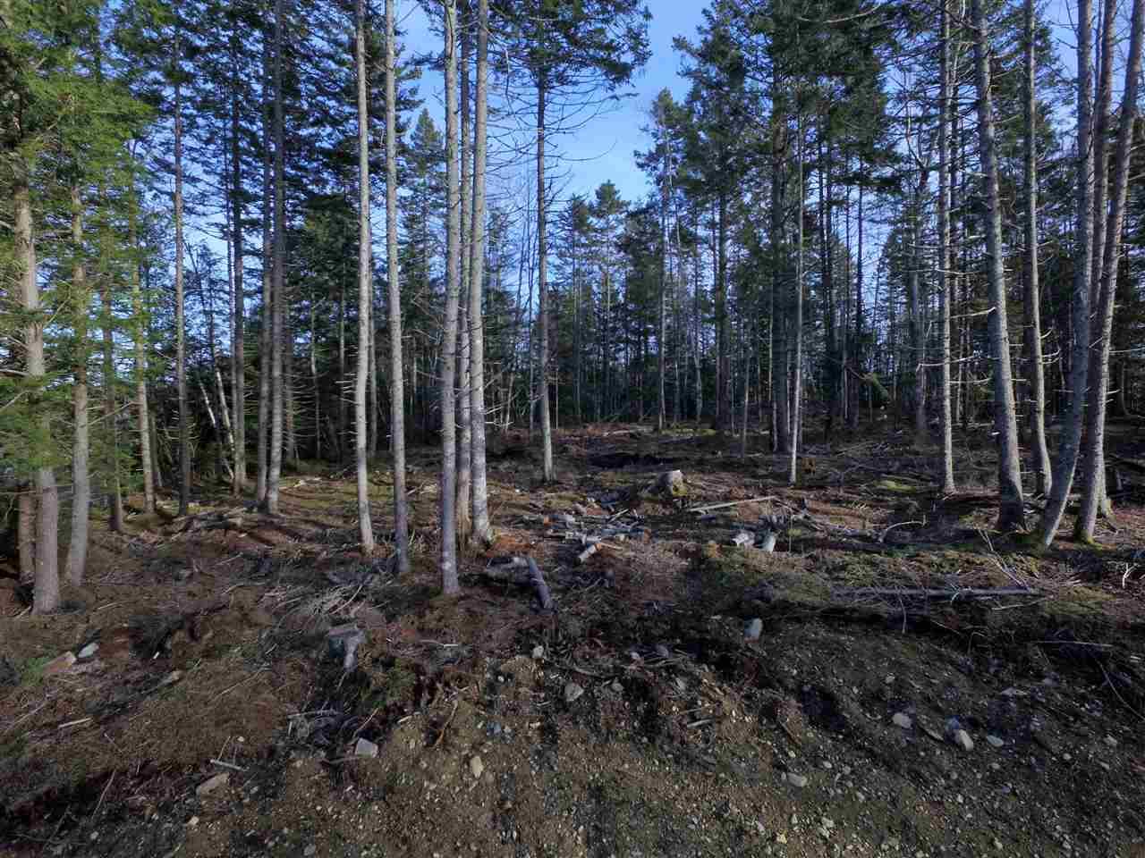 Lot 1 Forest Haven Drive, Italy Cross Nova Scotia, Canada