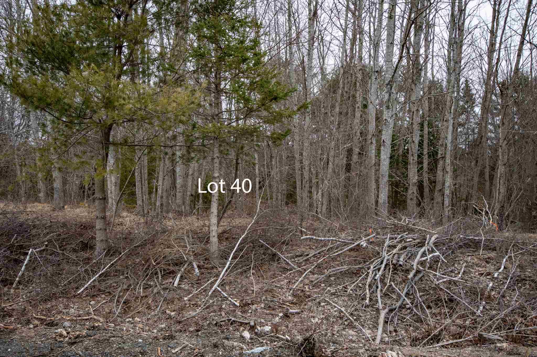 Lot 40 Delong Lane, New Germany Nova Scotia, Canada
