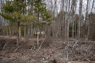 Lot 40 DeLong Lane, New Germany Nova Scotia, Canada