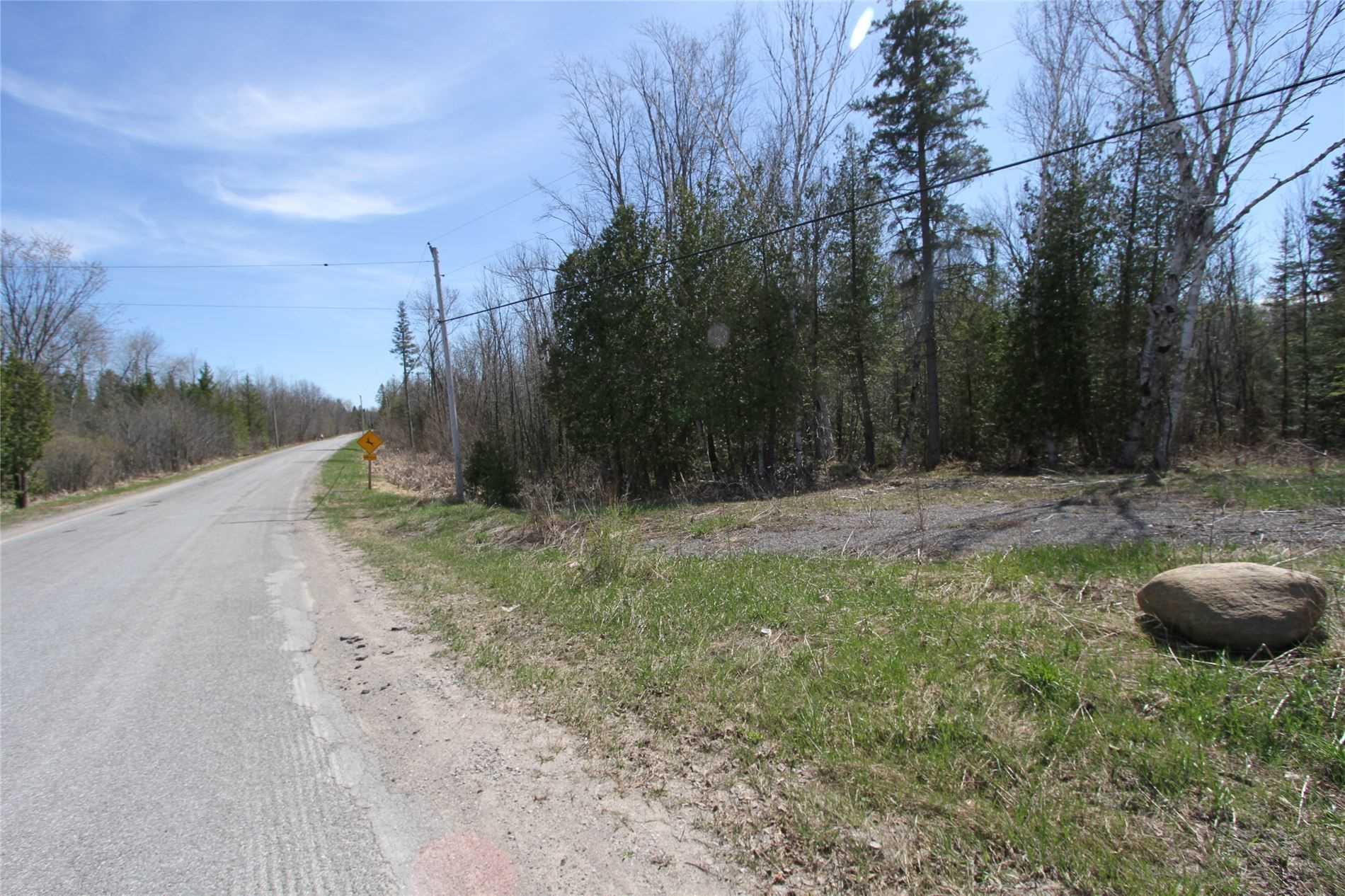 259 County Rd 41 Rd, Kawartha Lakes Ontario, Canada
