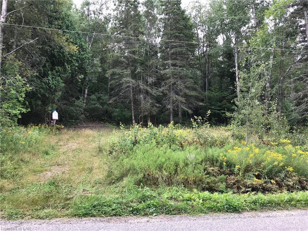 261 Doe Lake Road, Katrine Ontario, Canada