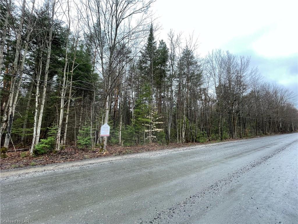 Germania Road, Bracebridge Ontario, Canada