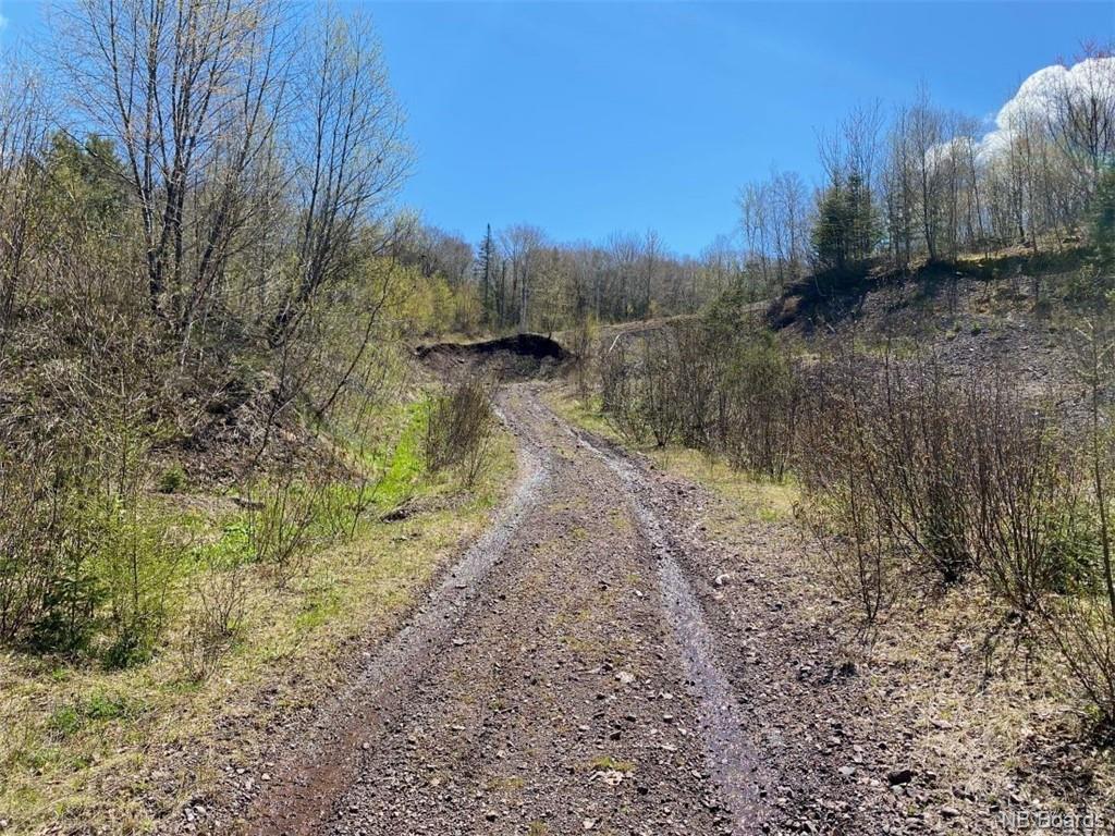 25 Acres Route 865, Southfield New Brunswick, Canada