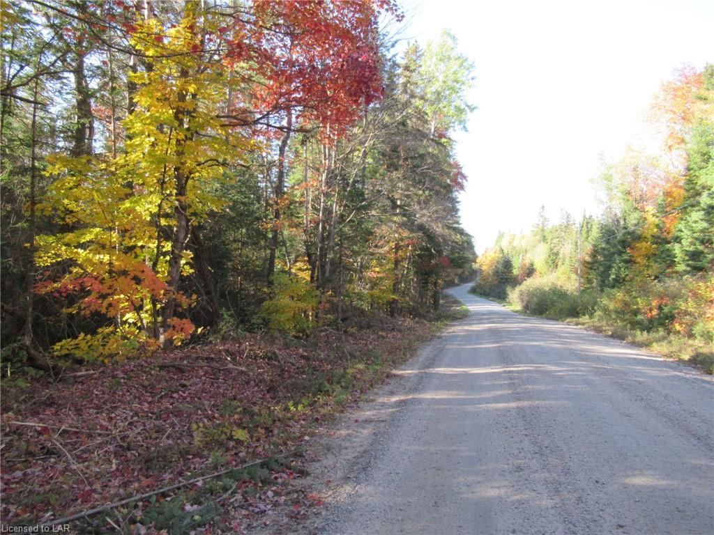 Lot 4 Whitney Road, Perry Township Ontario, Canada