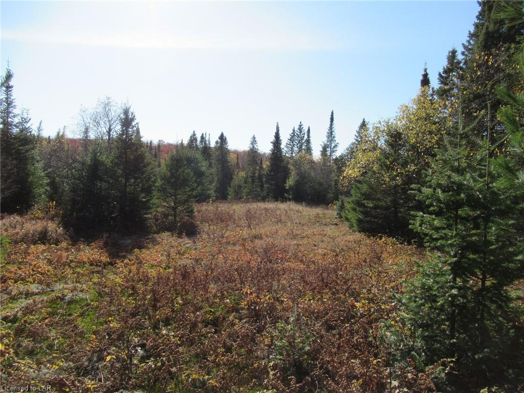 LOT 3 WHITNEY Road, Perry Township Ontario, Canada