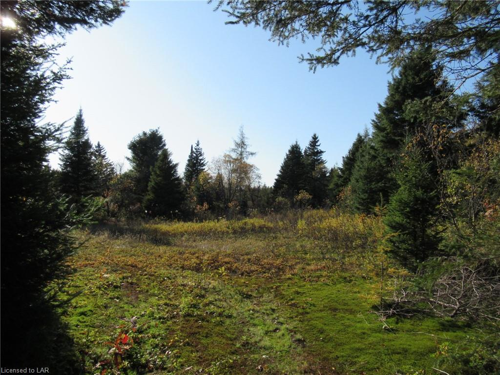 LOT 2 WHITNEY Road, Perry Township Ontario, Canada